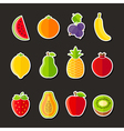 Organic fresh fruits and berries icons flat design vector image
