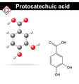 Protocatechuic acid model vector image vector image