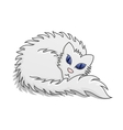 White Fluffy Cat vector image vector image