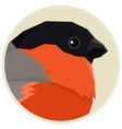 bullfinch bird round frame vector image vector image