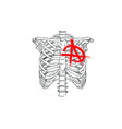 chest skeleton with anarchy symbol fashion tsirt vector image