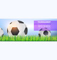 football balls in green grass close up on vector image vector image