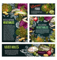 fresh vegetable and mushroom chalkboard banner vector image vector image