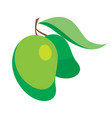 mangoes in cartoon shader vector image