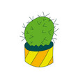 cactus cacti vector image vector image