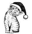 christmas cat pet 1 vector image vector image