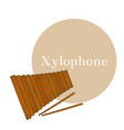 colored xylophone in hand-drawn style vector image vector image