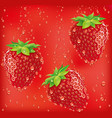 Fresh strawberry falling to juicy vector image
