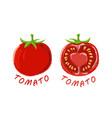 logo icon design tomato farm vector image vector image