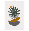 modern with tropical palm leaf doodle textures vector image