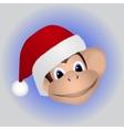 Monkey in a cap Santa vector image vector image