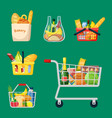 shopping baskets and bags set grocery plastic vector image vector image