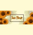 sun flower banner design vector image