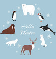 arctic and antarctic animals set winter vector image