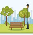beautiful park landscape scene vector image