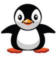 cartoon cute penguin vector image