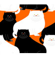 fat white and black cat pattern big thick pet vector image