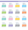 file format colorful icons vector image