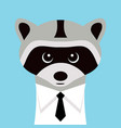 funny raccoon in a shirt with a tie vector image vector image