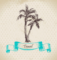 Hand drawn vintage background with palms vector image vector image