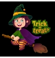 Happy Halloween Witch Girl Flying on Broom vector image