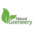 natural greneery leaves white background im vector image