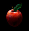 red apple realistic color artistic image vector image