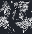 seamless pattern with hand drawn chalk fuchsia vector image vector image