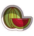sticker watermelon fruit icon stock vector image vector image