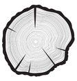 Tree rings background Annual tree vector image vector image