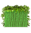Green Bamboo Fence with Palm vector image vector image