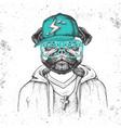 hipster animal pug-dog dressed in cap like rapper vector image