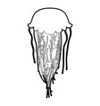 jellyfish icon outline vector image