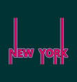new york city name vector image