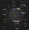soap water bubbles on dark backdrop vector image