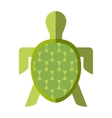 turtle animal isolated icon vector image