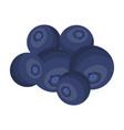 blueberry berries sweet fruit fruit single icon vector image