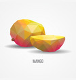 bright healthy mango fruit concept vector image vector image