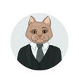 catman portrait vector image