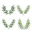 olive branch wreaths isolated on white vector image vector image