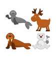 adorable animals from cold countries and north vector image