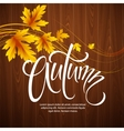 Autumn background with leaf and wood texture vector image vector image