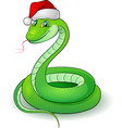 cartoon of a snakes on white vector image
