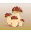 Mushrooms design isolated vector image vector image