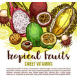 tropical fruit poster of exotic asian berry sketch vector image vector image