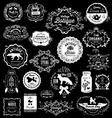 20 Vintage hand drawn Logos vector image vector image