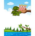 chicks in nest on tree branch vector image vector image