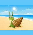 cute snail cartoon at the beach vector image vector image