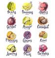 fruits fruity apple banana and exotic mango vector image