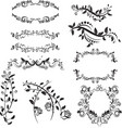 isolated set floral vector image vector image